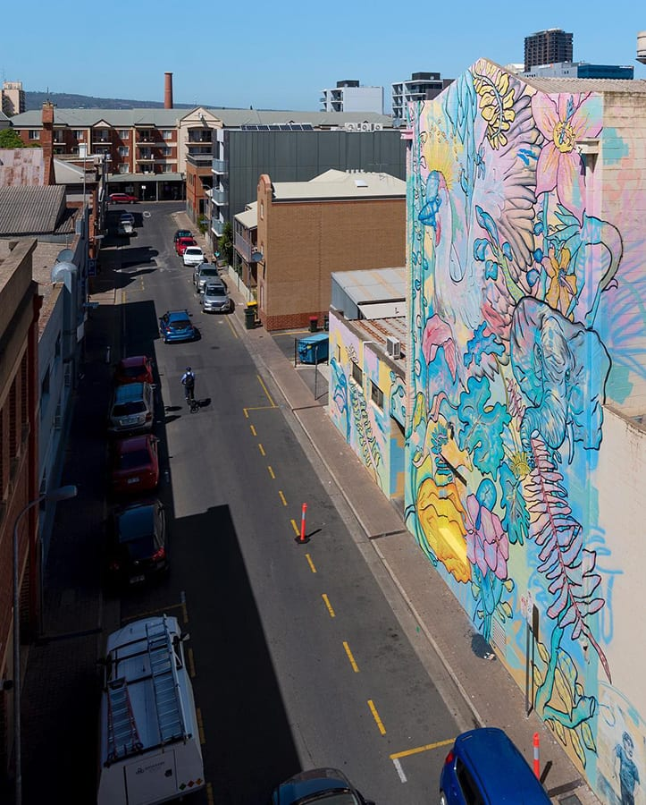 Moore Street Adelaide Sanna street art